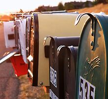 Mailboxes by Kay Kempton Raade