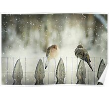 Weathering the First Snow Poster