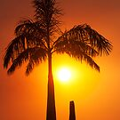 Golden glow - sunset in the tropics. by Jenny Dean
