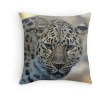 Do NOT Mess with Me, Buddy!! Throw Pillow