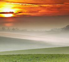 The Time of Mists by Andy Freer