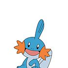 Mudkip by Chris Stokes