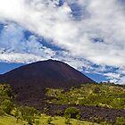 Pacaya Volcano Antigua, Guatemala by bulljup