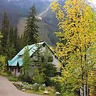 Fall at Emerald Lake by Teresa Zieba