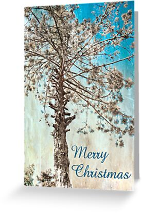 Tree Of Life - Christmas Card by Katayoonphotos