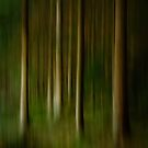 Abstract Swedish Forest by Ryan Carter