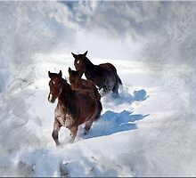 Youngsters in the Snow by Bine