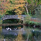 Vogelenzang Park - Antwerp - Belgium #2 by Gilberte