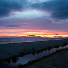 The Purple Stream Near Allonby by Jan Fialkowski