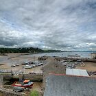 Tenby Harbour Pembrokeshire 16 by Steve Purnell