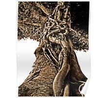 full story tree Poster