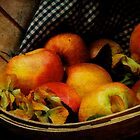 Autumn Harvest by Lois  Bryan