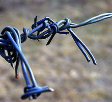 Barbed Wire by wa7ial