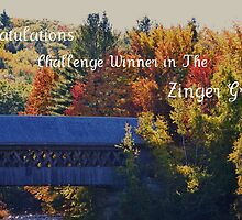 Challenge entry..Zinger Group by jeanlphotos