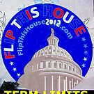 Contract With America; Term Limits by Stephen Peace