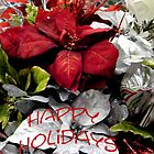 Happy Holidays by R&PChristianDesign &Photography