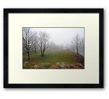 Shot in the Fog 2 Framed Print