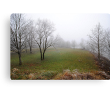 Shot in the Fog 2 Canvas Print