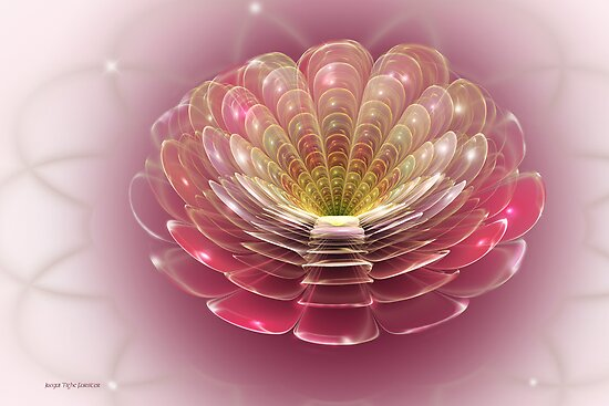 Pearlescent Chrysanthemum by viennablue