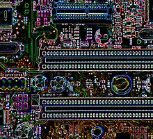 Motherboard by Kris Montgomery