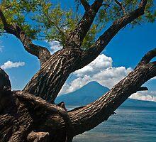 Lago de Atitlan4 by bulljup