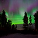 November Auroras by peaceofthenorth