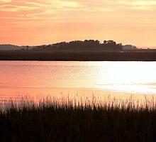 *James Island Marsh Sunset* by DeeZ (D L Honeycutt)