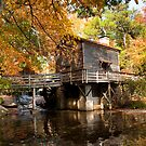 Old Grist Mill-Stone Mountain Park by Karen  Burgess