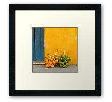 Fresh coconuts in the street of Cartagena, Colombia Framed Print