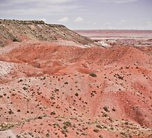 Painted Desert II  by earthmover