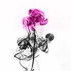 Abstract Smoke Flower.  by Daniel  Bristow