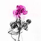 Abstract Smoke Flower.  by Daniel  Bristow