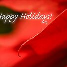 Poinsettia dreams - holiday card by Celeste Mookherjee