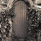 The Garden Door? by Ashley Beavan BA (hons) BII