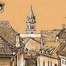 Roofs in Transylvania by Dasidaria Hardcastle