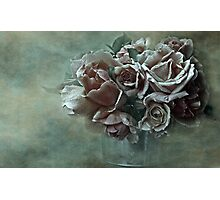 """Dreamily Roses ..."" Photographic Print"