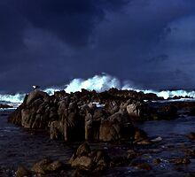 Winter Storm Monterey California 1979 by Jeffrey  Sinnock