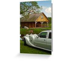 Light limousine in the meadow Greeting Card