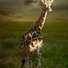 Giraffe iPhone II by KBritt