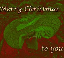 Christmas Card - Magic Mushroom by MotherNature