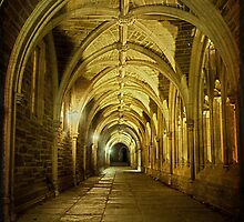Traveling through Collegiate Gothic Arches by Debra Fedchin