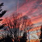 Chemtrail In Sunset by joan warburton