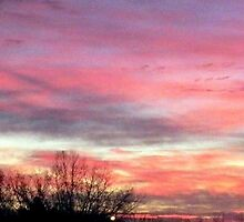Black Friday SUNRISE ! by Diane Trummer Sullivan