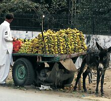 Sweet Mobile Fruits by Bobby Dar