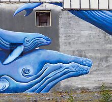 The Whales by Walter Quirtmair