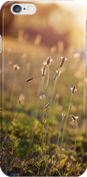 visions of inspiration ~ iPhone Case by Adriana Glackin