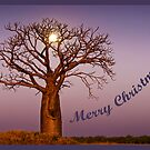 Moonlight Christmas by Mieke Boynton