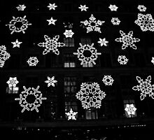 Flakes on 5th Avenue by photographist