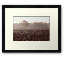 Lonely oak in frosty day Framed Print