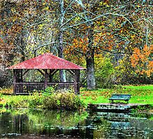 A Picnic In the Park  by Donnie Voelker